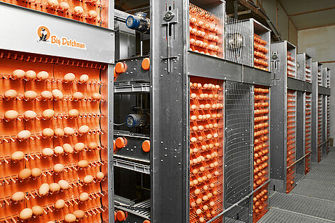 Sistemi skupljanja jaja